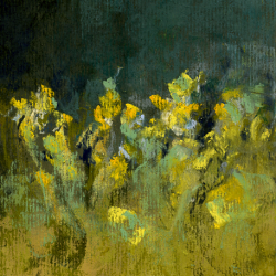 « Fleurs Jaunes - 16x12 cm »