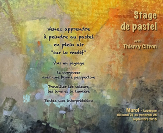 cours-et-stages-thierry-citron